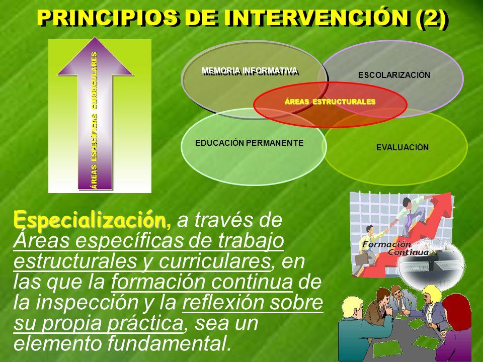 PRINCIPIOS DE INTERVENCIÓN (2) PRINCIPIOS DE INTERVENCIÓN (2) Especialización Especialización, a través de Áreas específicas de trabajo estructurales