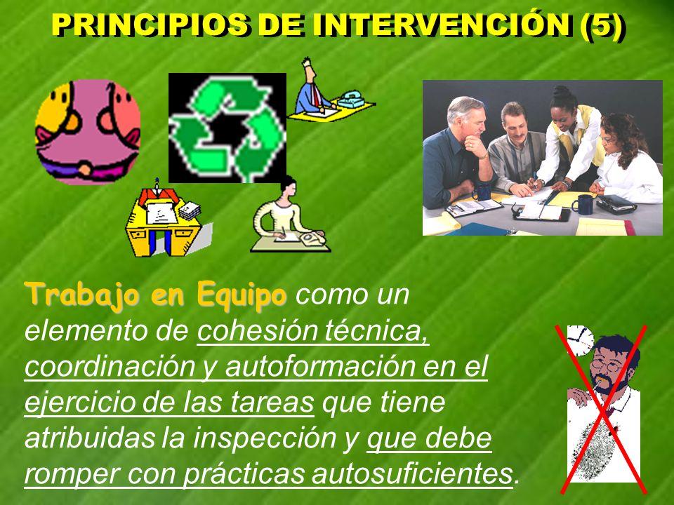 PRINCIPIOS DE INTERVENCIÓN (5) PRINCIPIOS DE INTERVENCIÓN (5) Trabajo en Equipo Trabajo en Equipo como un elemento de cohesión técnica, coordinación y