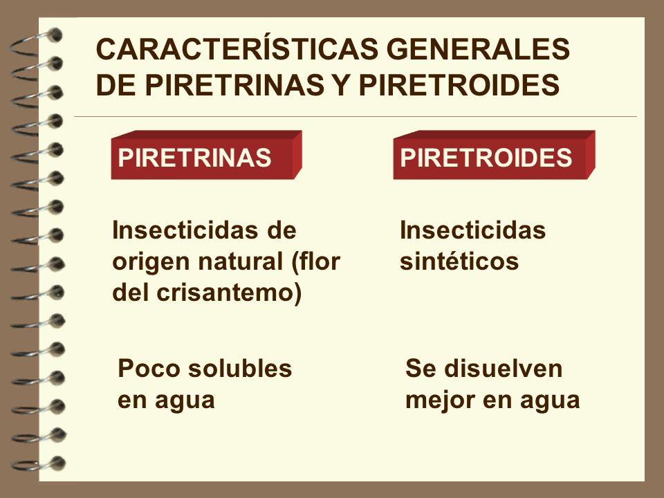 CARACTERÍSTICAS GENERALES DE PIRETRINAS Y PIRETROIDES PIRETRINASPIRETROIDES Insecticidas de origen natural (flor del crisantemo) Insecticidas sintétic