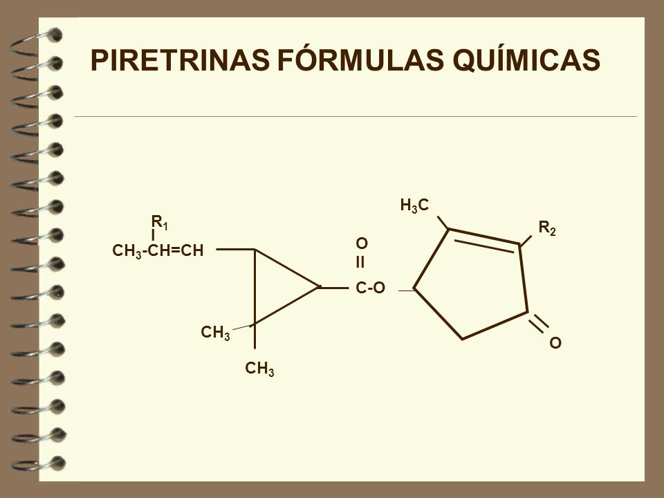 PIRETRINAS FÓRMULAS QUÍMICAS (CONT.) PIRETRINA ICH 3 CH 2 CH=CHCH=CH 2 JASMOLINA ICH 3 CH 2 CH=CHCH 2 CH 3 CINERINA ICH 3 CH 2 CH=CHCH 3 PIRETRINA II COOCH 3 CH 2 CH=CHCH=CH 2 JASMOLINA IICOOCH3CH 2 CH=CHCH 2 CH 3 CINERINA IICOOCH3 CH 2 CH=CHCH 3 R1R1 R2R2