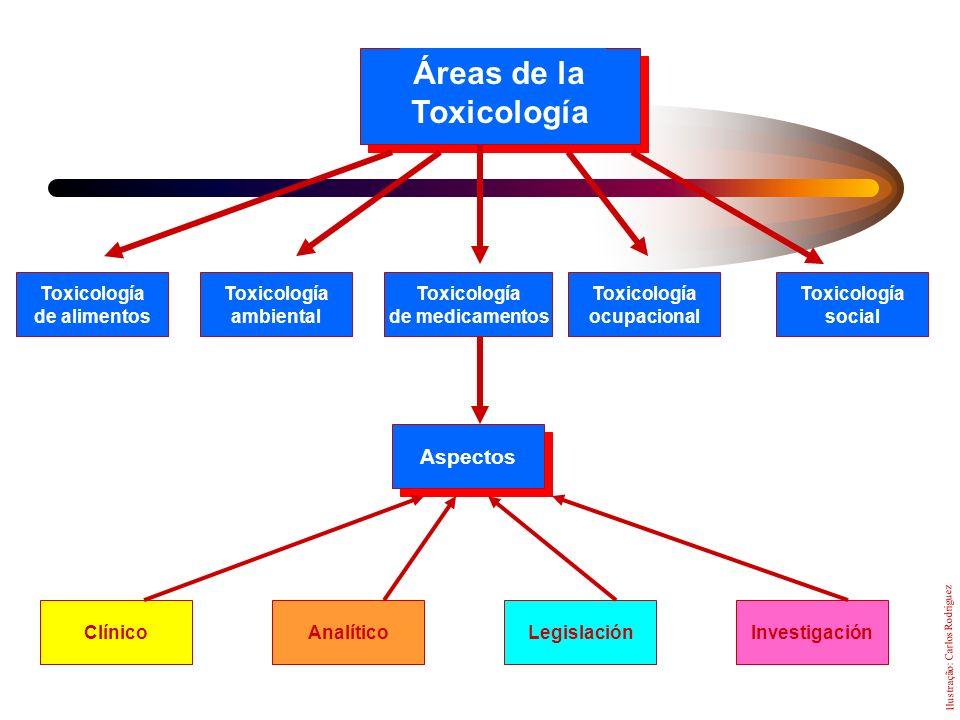 Toxicologia Es la ciencia que estudia los efectos nocivos producidos por las sustancias químicas sobre los organismos vivos