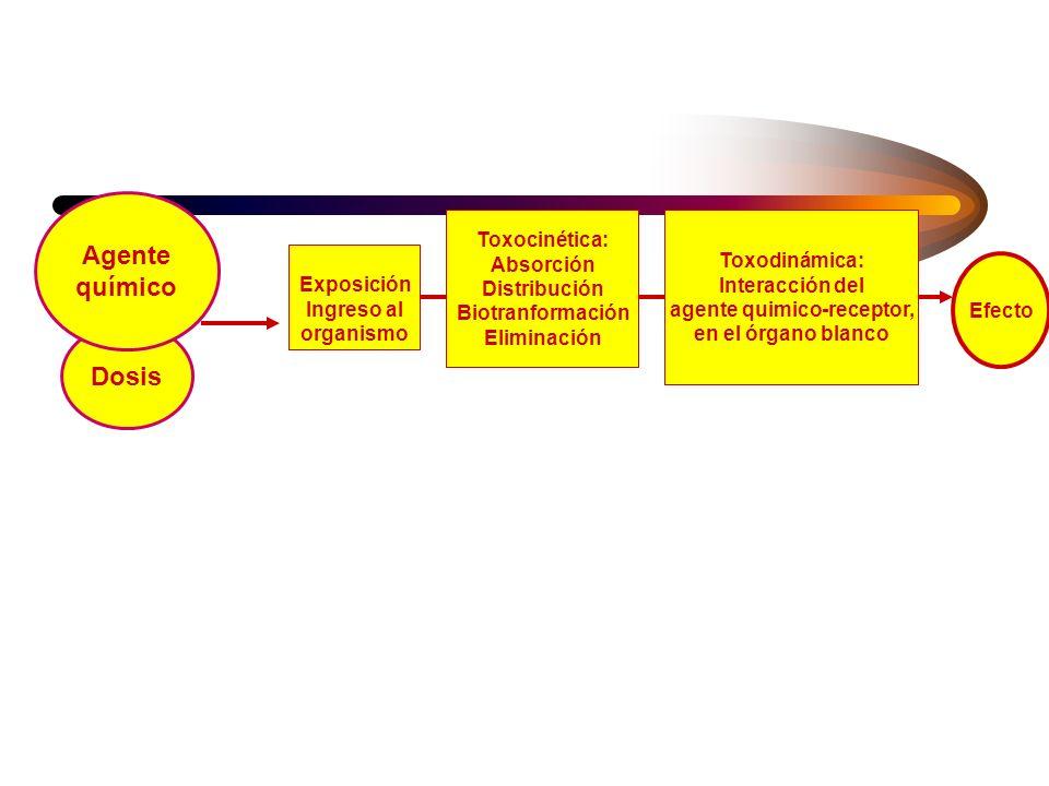 Por qué son necesarios conocimientos básicos de toxicologia? (2) –estimar el tipo, tamaño, localización y distribución de la fuente de liberación –det