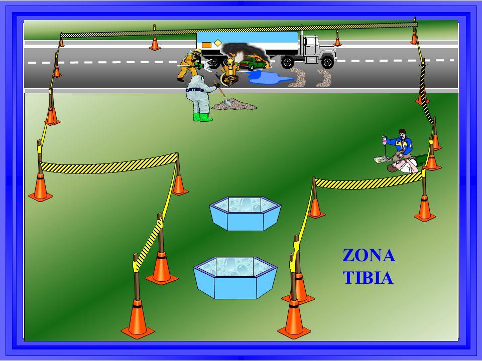ZONA TIBIA