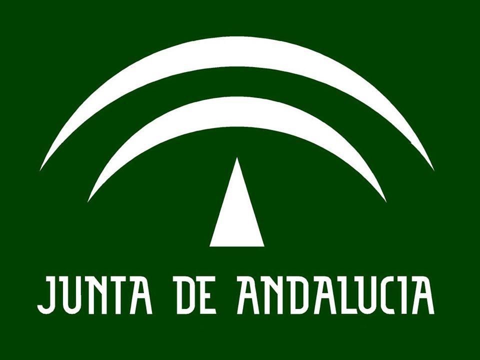 2005 / 2007 FASES Y CALENDARIO SOBRE LA EVALUACIÓN DE DIAGNÓSTICO (BORRADOR) D.G.de Ordenación y Evaluación Educativa FASES 2ª PREPARACIÓN DE LA APLICACIÓN.