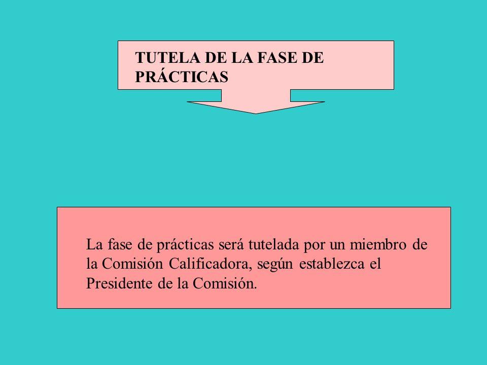 TUTELA DE LA FASE DE PRÁCTICAS La fase de prácticas será tutelada por un miembro de la Comisión Calificadora, según establezca el Presidente de la Comisión.