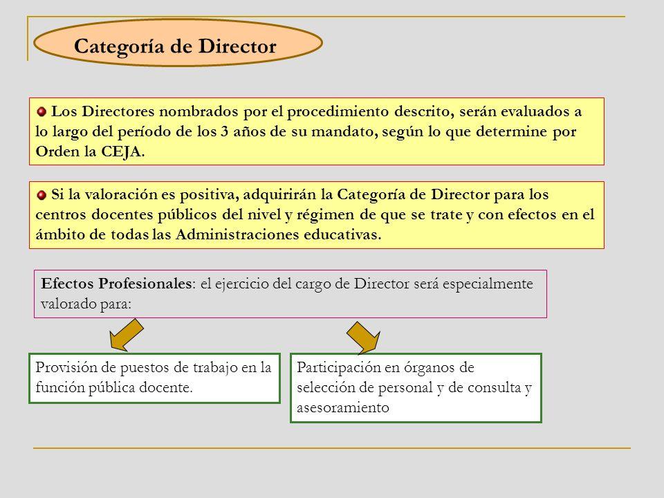Categoría de Director Los Directores nombrados por el procedimiento descrito, serán evaluados a lo largo del período de los 3 años de su mandato, según lo que determine por Orden la CEJA.