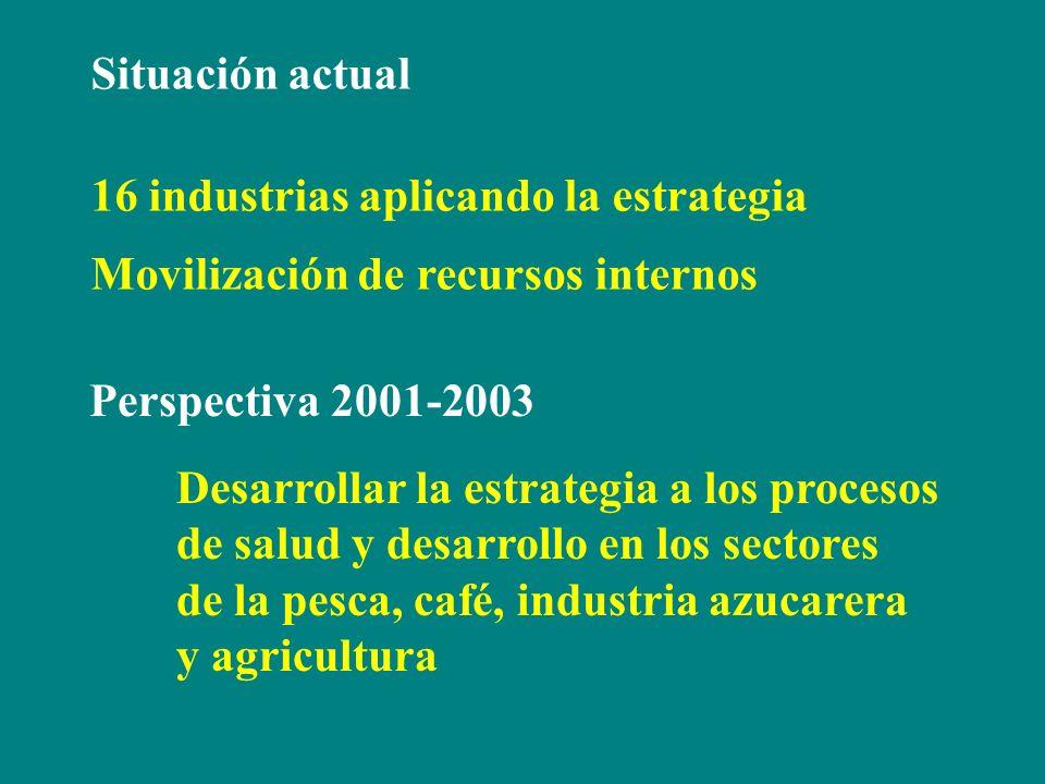 Situación actual 16 industrias aplicando la estrategia Movilización de recursos internos Perspectiva 2001-2003 Desarrollar la estrategia a los proceso