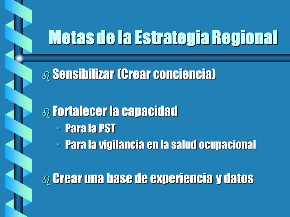 Metas de la Estrategia Regional Metas de la Estrategia Regional b Sensibilizar (Crear conciencia) b Fortalecer la capacidad Para la PSTPara la PST Par