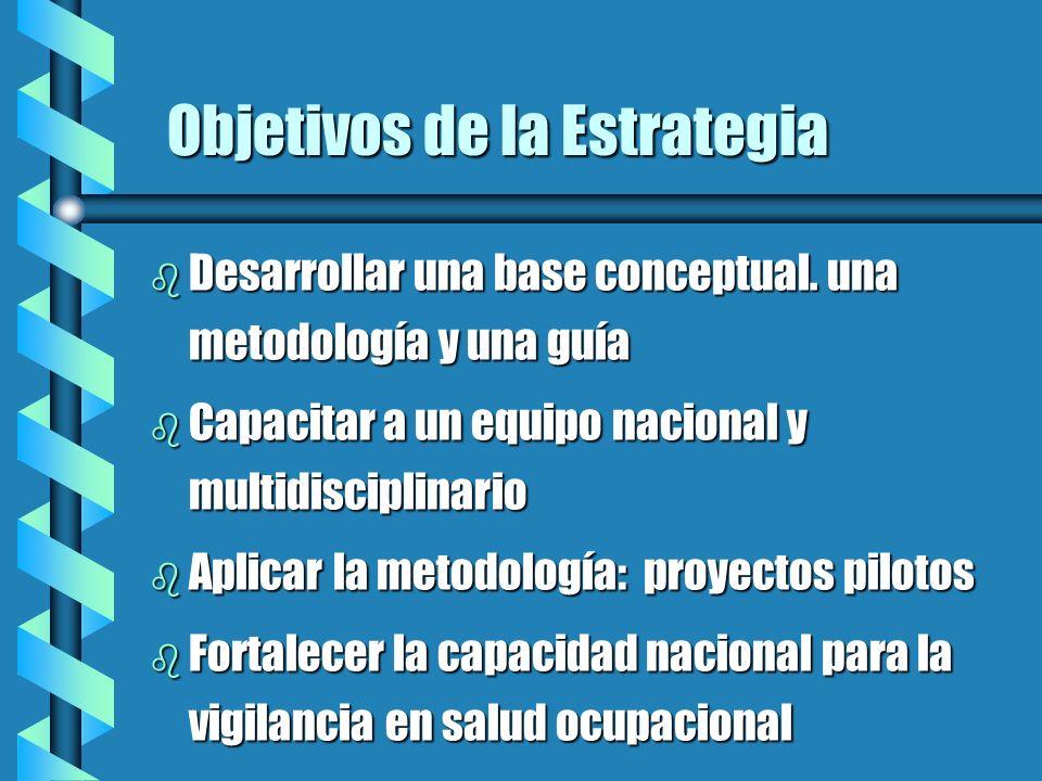 Objetivos de la Estrategia b Desarrollar una base conceptual. una metodología y una guía b Capacitar a un equipo nacional y multidisciplinario b Aplic
