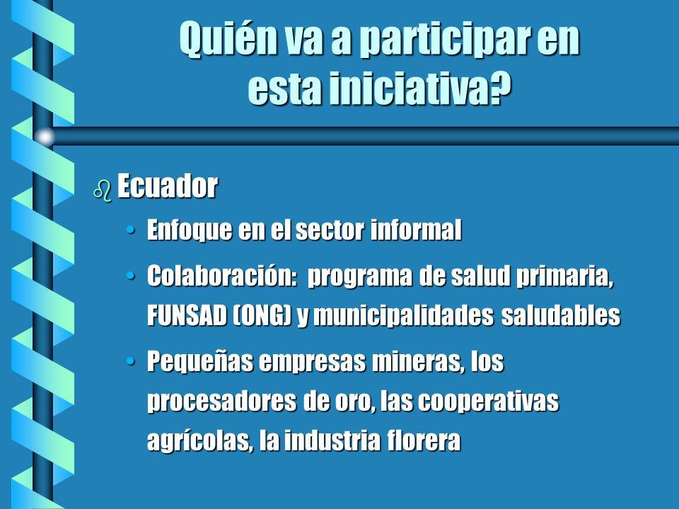 Quién va a participar en esta iniciativa? b Ecuador Enfoque en el sector informalEnfoque en el sector informal Colaboración: programa de salud primari