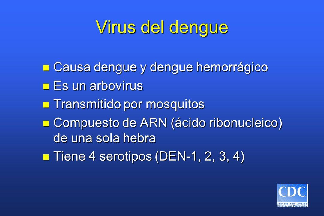 Virus del dengue n Causa dengue y dengue hemorrágico n Es un arbovirus n Transmitido por mosquitos n Compuesto de ARN (ácido ribonucleico) de una sola