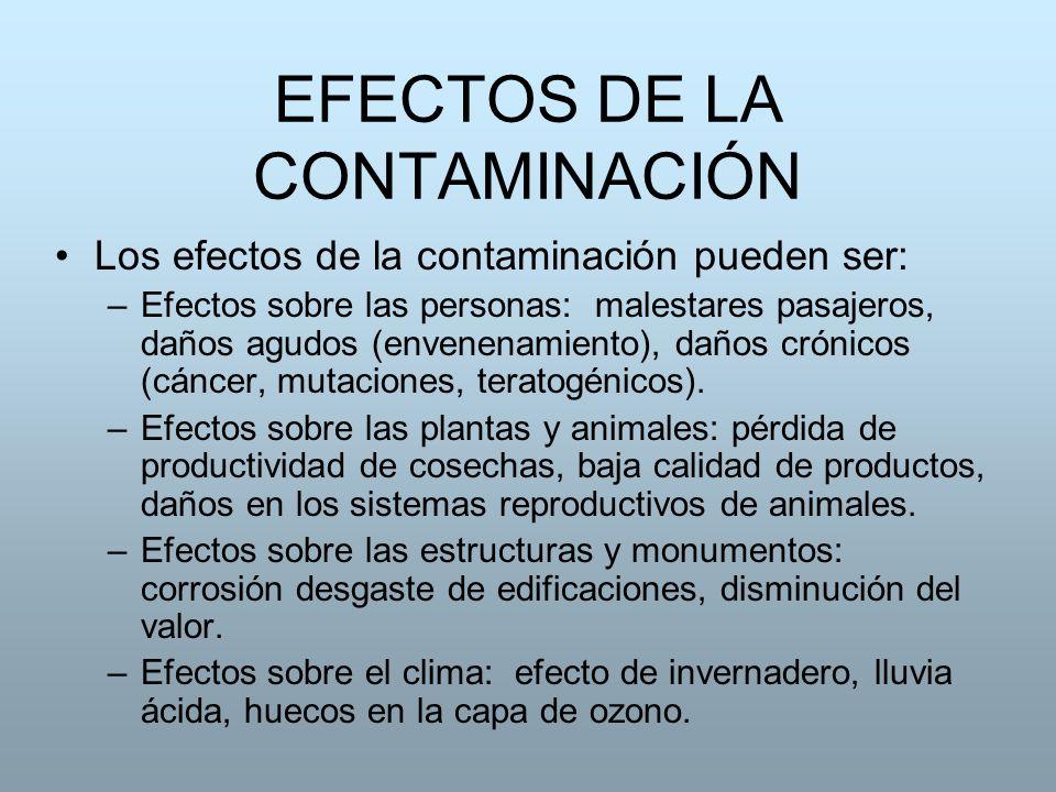 EFECTOS DE LA CONTAMINACIÓN Los efectos de la contaminación pueden ser: –Efectos sobre las personas: malestares pasajeros, daños agudos (envenenamient