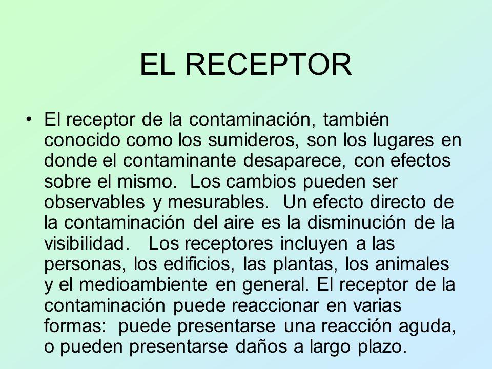 EL RECEPTOR El receptor de la contaminación, también conocido como los sumideros, son los lugares en donde el contaminante desaparece, con efectos sob