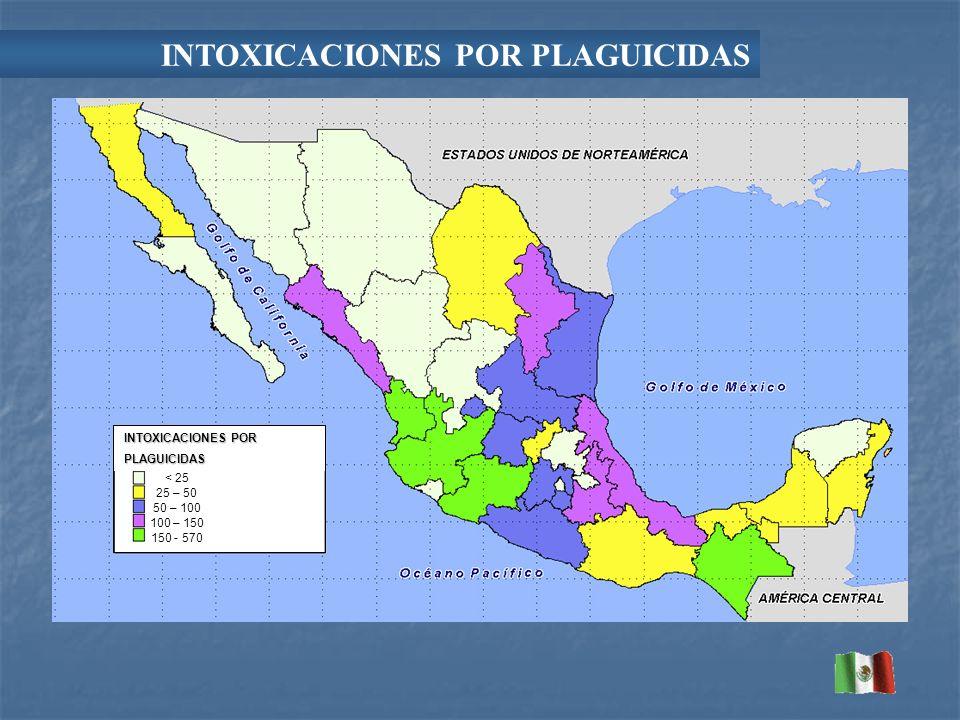 INTOXICACIONES POR PLAGUICIDAS < 25 25 – 50 50 – 100 100 – 150 150 - 570 INTOXICACIONES POR PLAGUICIDAS