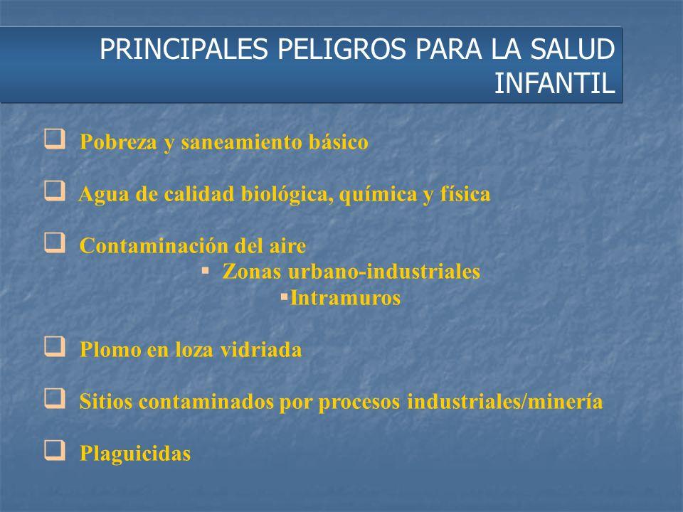 PRINCIPALES PELIGROS PARA LA SALUD INFANTIL Pobreza y saneamiento básico Agua de calidad biológica, química y física Contaminación del aire Zonas urba