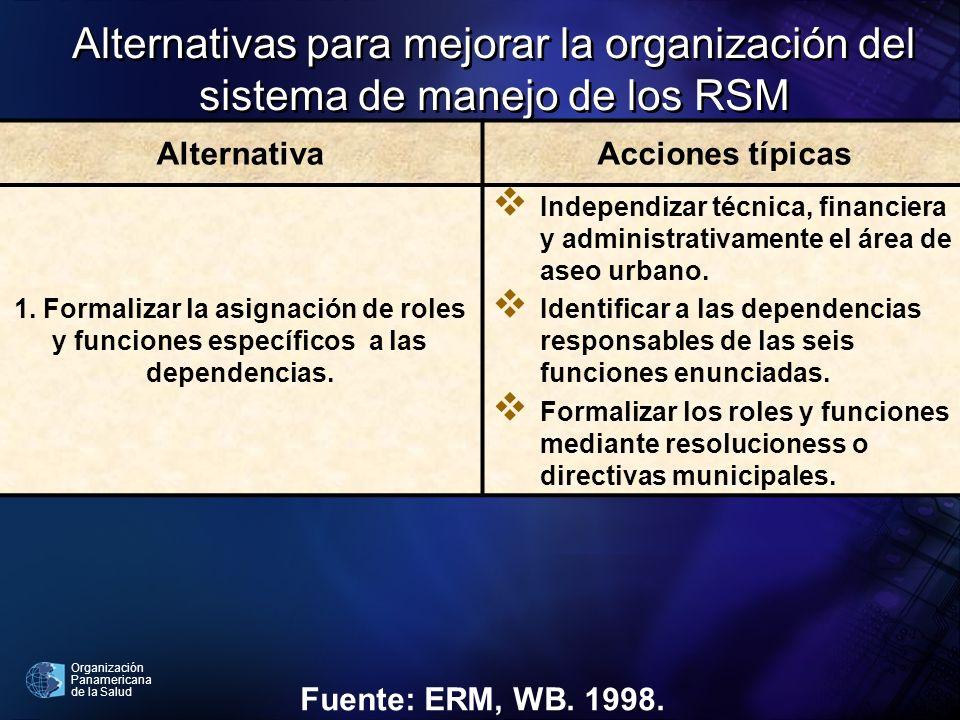 Organización Panamericana de la Salud Alternativas para mejorar la organización del sistema de manejo de los RSM AlternativaAcciones típicas 1. Formal