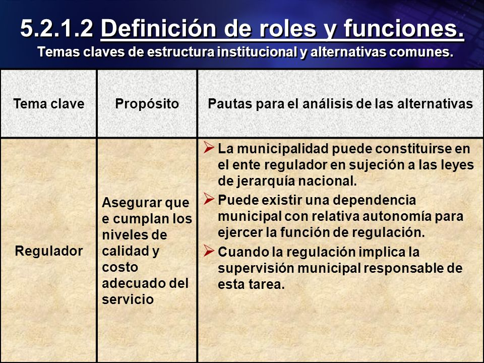 Organización Panamericana de la Salud 5.2.1.2 Definición de roles y funciones. Temas claves de estructura institucional y alternativas comunes. Tema c