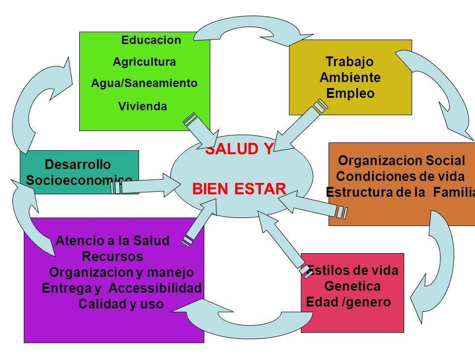SALUD Y BIEN ESTAR Educacion Agricultura Agua/Saneamiento Vivienda Trabajo Ambiente Empleo Organizacion Social Condiciones de vida Estructura de la Fa