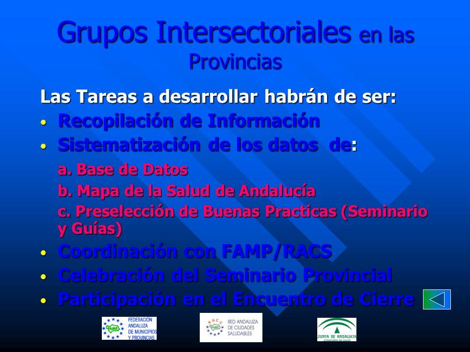 Grupos Intersectoriales en las Provincias Las Tareas a desarrollar habrán de ser: Recopilación de Información Recopilación de Información Sistematizac