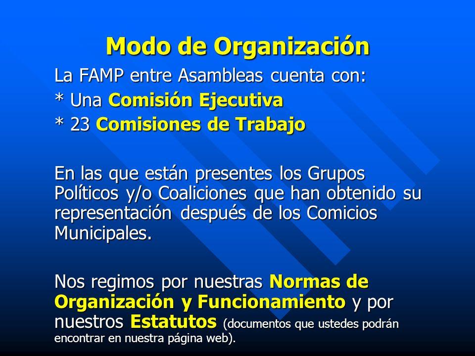 Modo de Organización La FAMP entre Asambleas cuenta con: * Una Comisión Ejecutiva * 23 Comisiones de Trabajo En las que están presentes los Grupos Pol