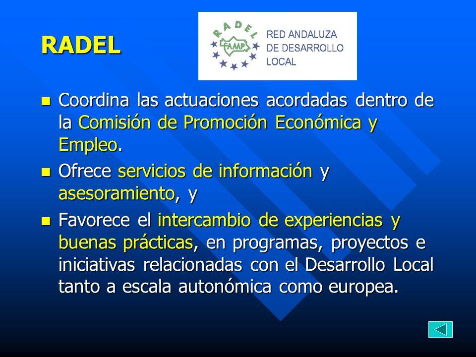 RADEL Coordina las actuaciones acordadas dentro de la Comisión de Promoción Económica y Empleo. Coordina las actuaciones acordadas dentro de la Comisi