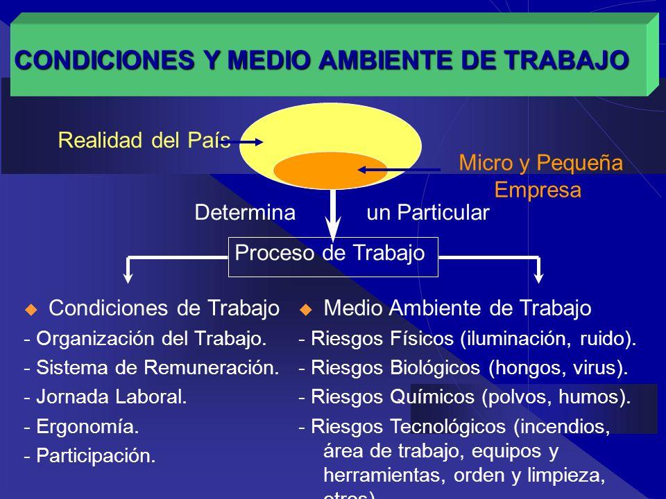 METODOLOGÍA Se aborda el problema desde las organizaciones de micro y pequeñas empresas.