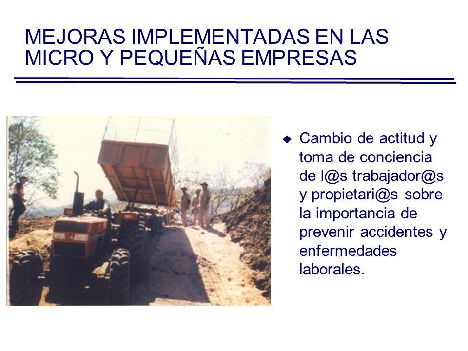 MEJORAS IMPLEMENTADAS EN LAS MICRO Y PEQUEÑAS EMPRESAS Mayor ordenamiento con respecto a materiales y herramientas de trabajo.