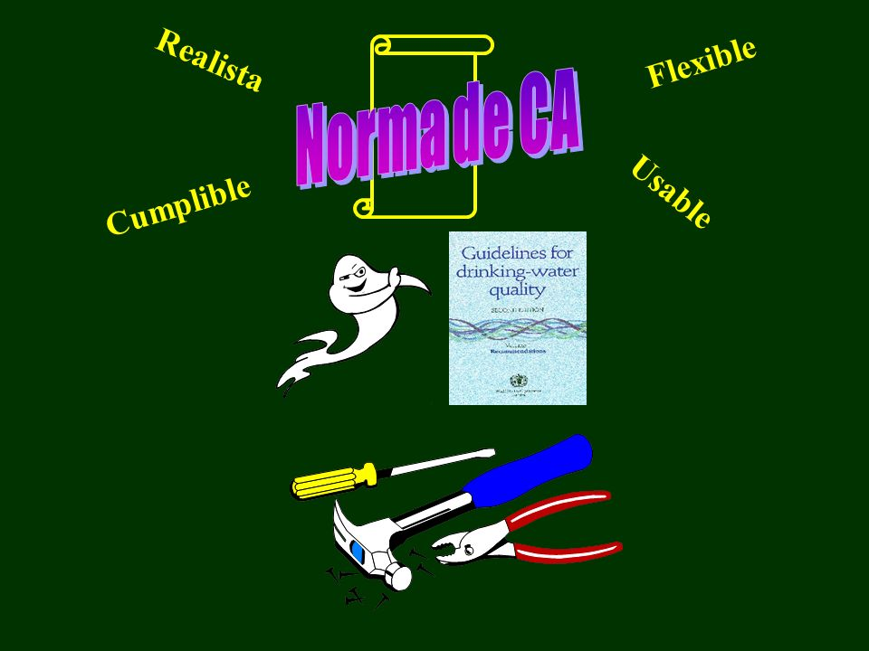 Realista Flexible Cumplible Usable