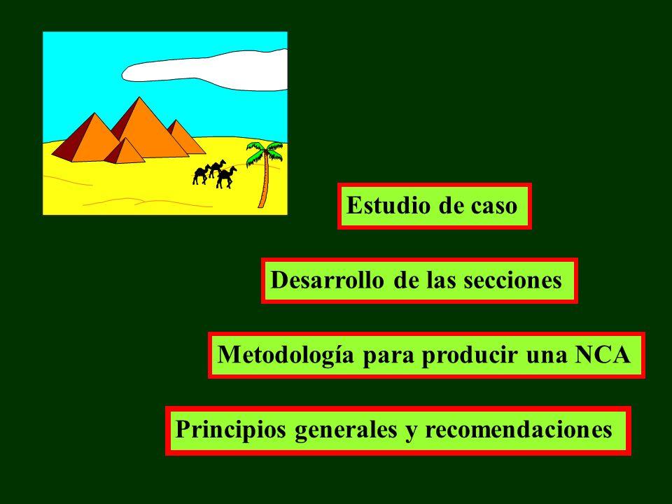 Principios generales y recomendaciones Metodología para producir una NCA Desarrollo de las secciones Estudio de caso