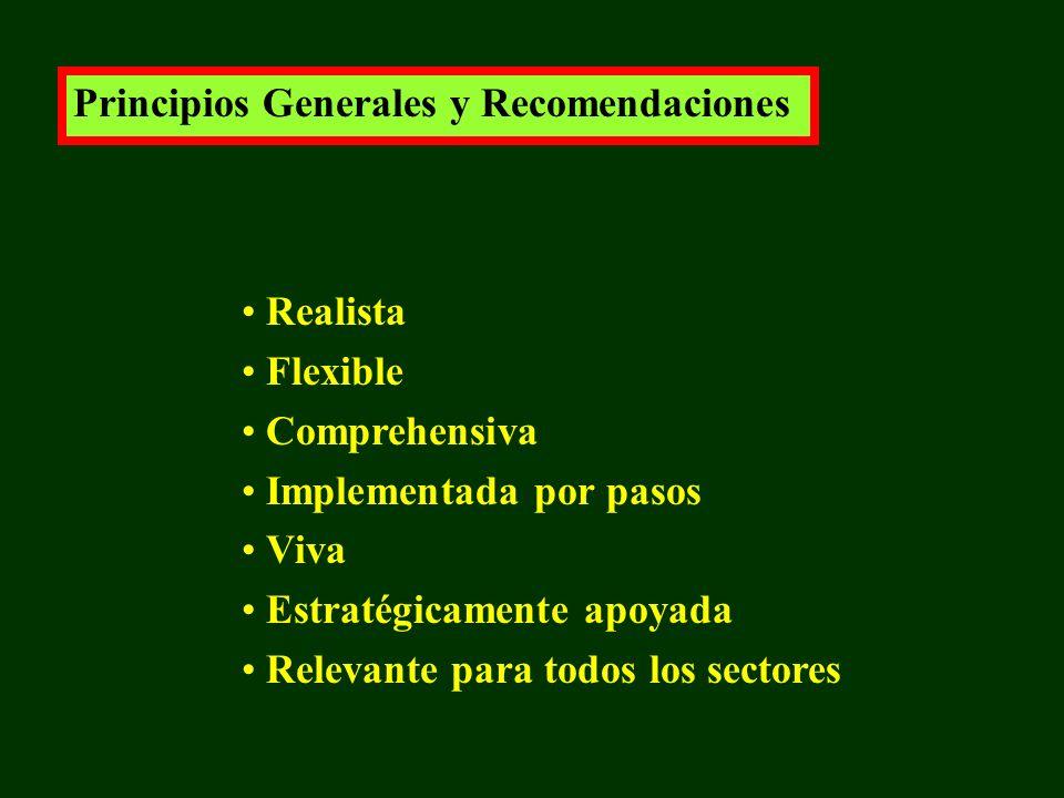 Principios Generales y Recomendaciones Realista Flexible Comprehensiva Implementada por pasos Viva Estratégicamente apoyada Relevante para todos los sectores