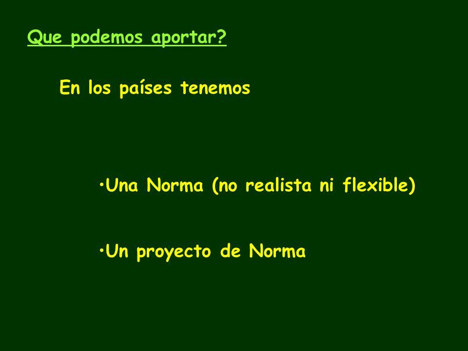 Que podemos aportar En los países tenemos Una Norma (no realista ni flexible) Un proyecto de Norma