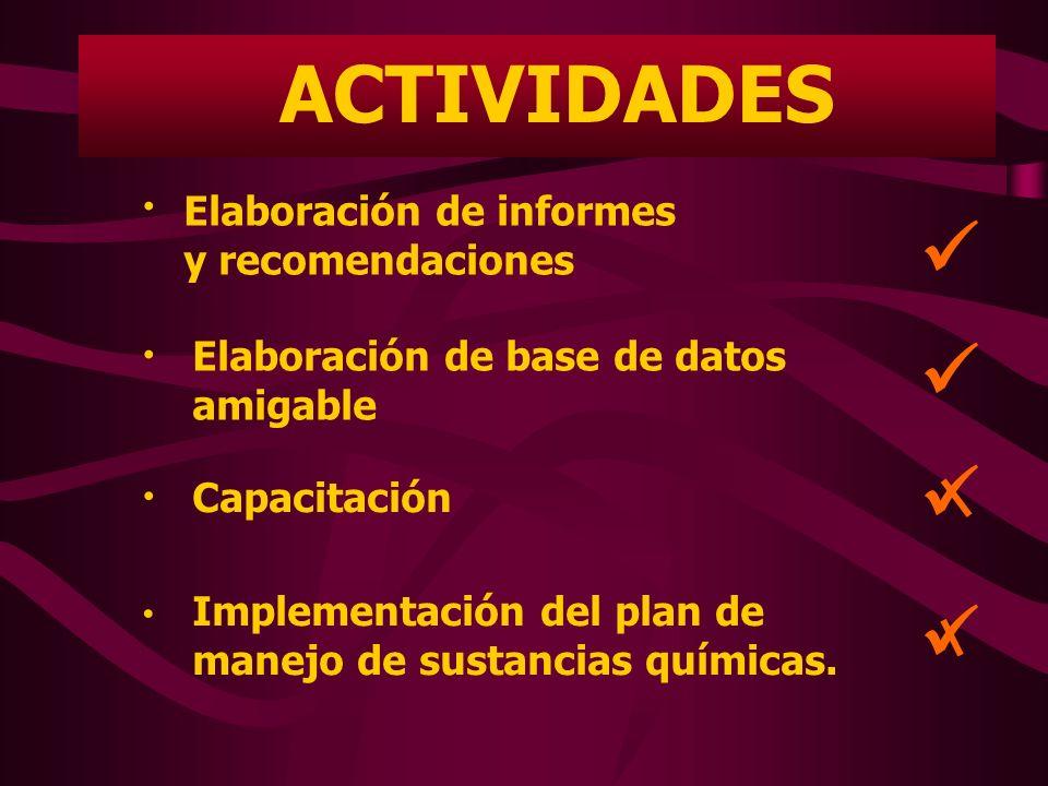 ACTIVIDADES Elaboración de informes y recomendaciones Elaboración de base de datos amigable Capacitación Implementación del plan de manejo de sustanci
