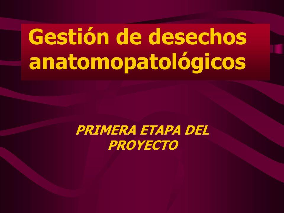 La Consultoría incluyó las siguientes actividades: Elaborar un borrador de normativa para manejo de desechos anatomopatológicos.