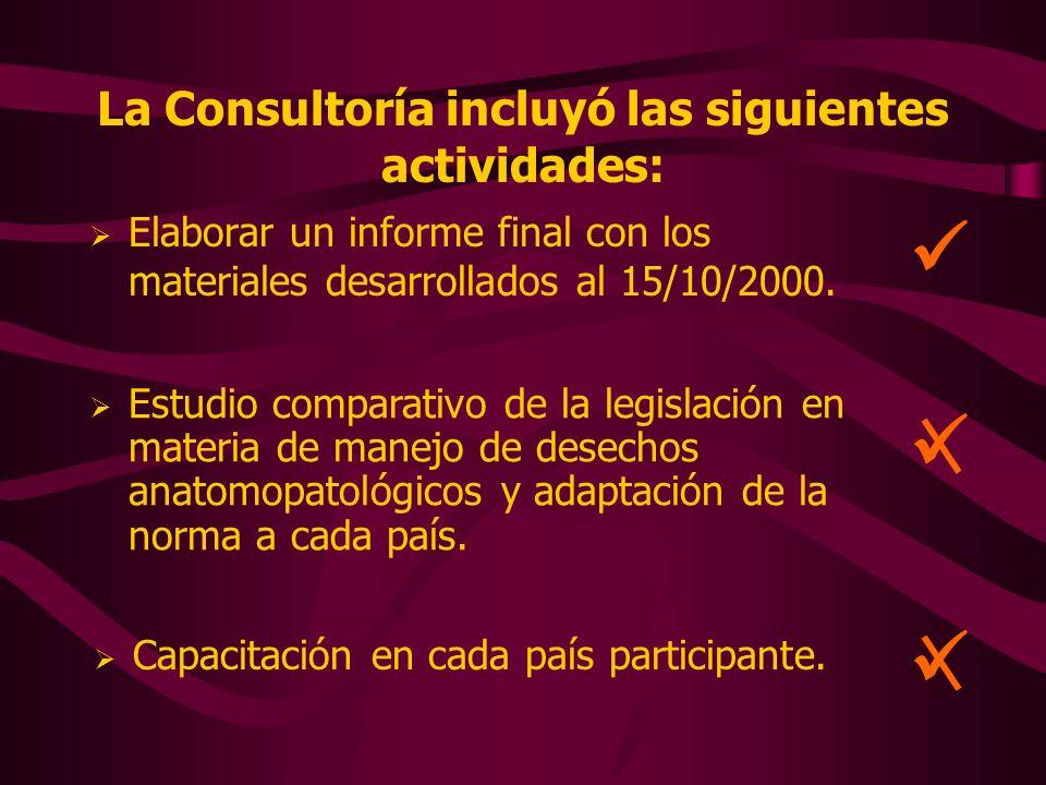 La Consultoría incluyó las siguientes actividades: Elaborar un informe final con los materiales desarrollados al 15/10/2000. Estudio comparativo de la