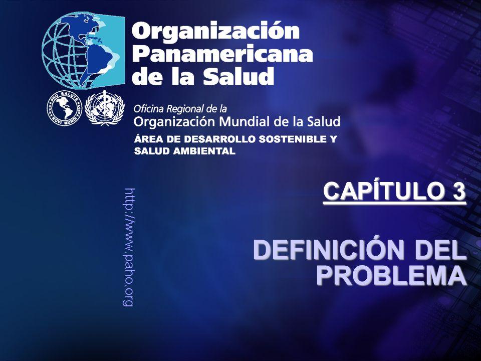 http://www.paho.org DEFINICIÓN DEL PROBLEMA CAPÍTULO 3