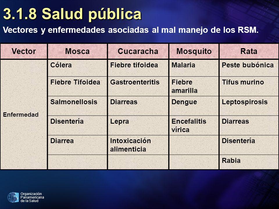 Organización Panamericana de la Salud 3.1.8 Salud pública Vectores y enfermedades asociadas al mal manejo de los RSM. VectorMoscaCucarachaMosquitoRata