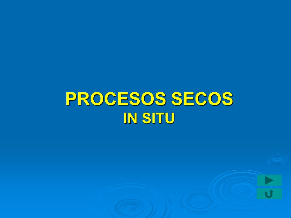 PROCESOS SECOS IN SITU