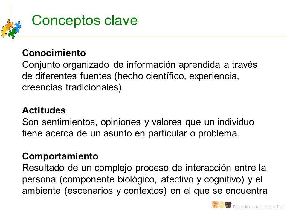 Educación sanitaria intercultural Conocimiento Conjunto organizado de información aprendida a través de diferentes fuentes (hecho científico, experiencia, creencias tradicionales).
