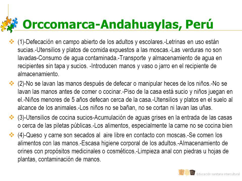 Educación sanitaria intercultural Orccomarca-Andahuaylas, Perú (1)-Defecación en campo abierto de los adultos y escolares.-Letrinas en uso están sucia