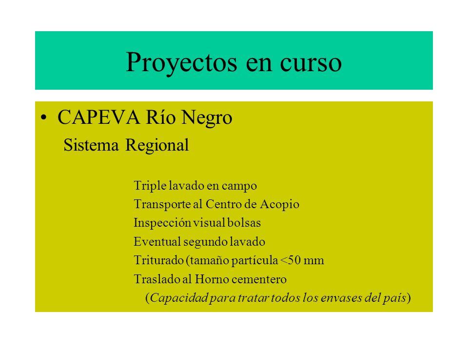 1991 Inicio Planes Pilotos a nivel latinoamericano LACPA-CASAFE 1997 Plan Piloto Alto Valle Río Negro Instalación Centro de Acopio y procesamiento env