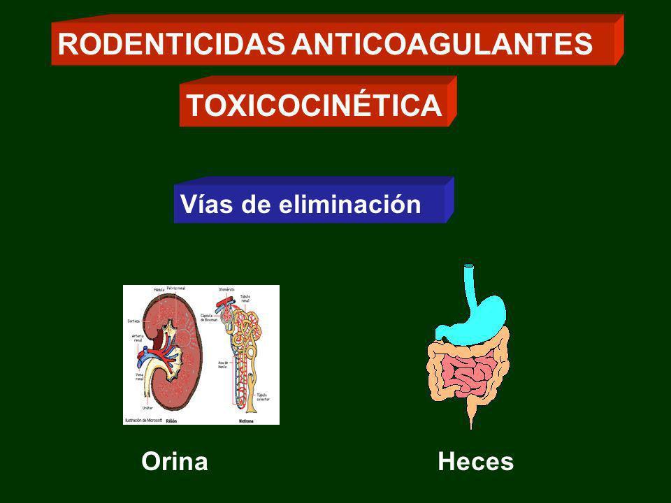 Vías de eliminación RODENTICIDAS ANTICOAGULANTES TOXICOCINÉTICA OrinaHeces