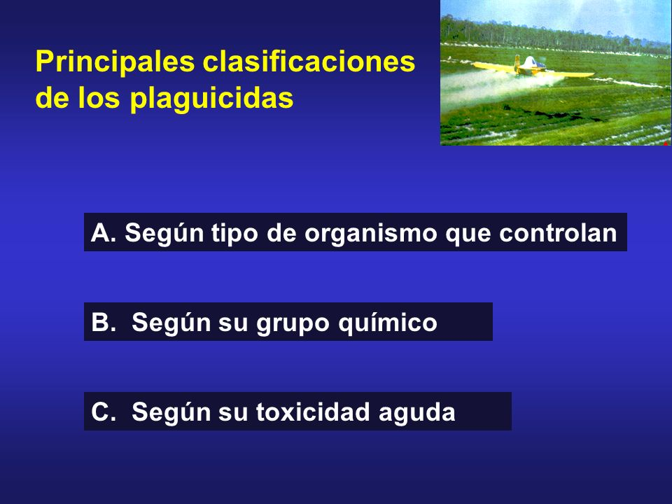 Principales clasificaciones de los plaguicidas A. Según tipo de organismo que controlan B. Según su grupo químico C. Según su toxicidad aguda