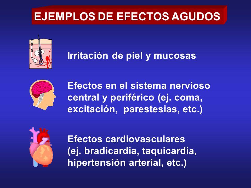 EJEMPLOS DE EFECTOS AGUDOS Irritación de piel y mucosas Efectos en el sistema nervioso central y periférico (ej. coma, excitación, parestesias, etc.)