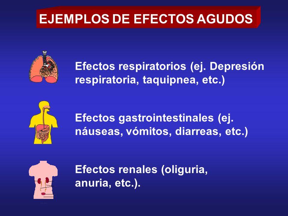 Efectos respiratorios (ej. Depresión respiratoria, taquipnea, etc.) Efectos gastrointestinales (ej. náuseas, vómitos, diarreas, etc.) Efectos renales