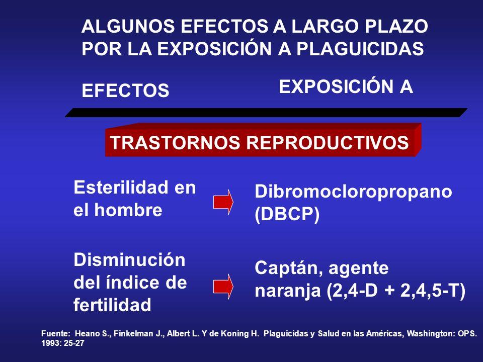 ALGUNOS EFECTOS A LARGO PLAZO POR LA EXPOSICIÓN A PLAGUICIDAS EFECTOS EXPOSICIÓN A Fuente: Heano S., Finkelman J., Albert L. Y de Koning H. Plaguicida