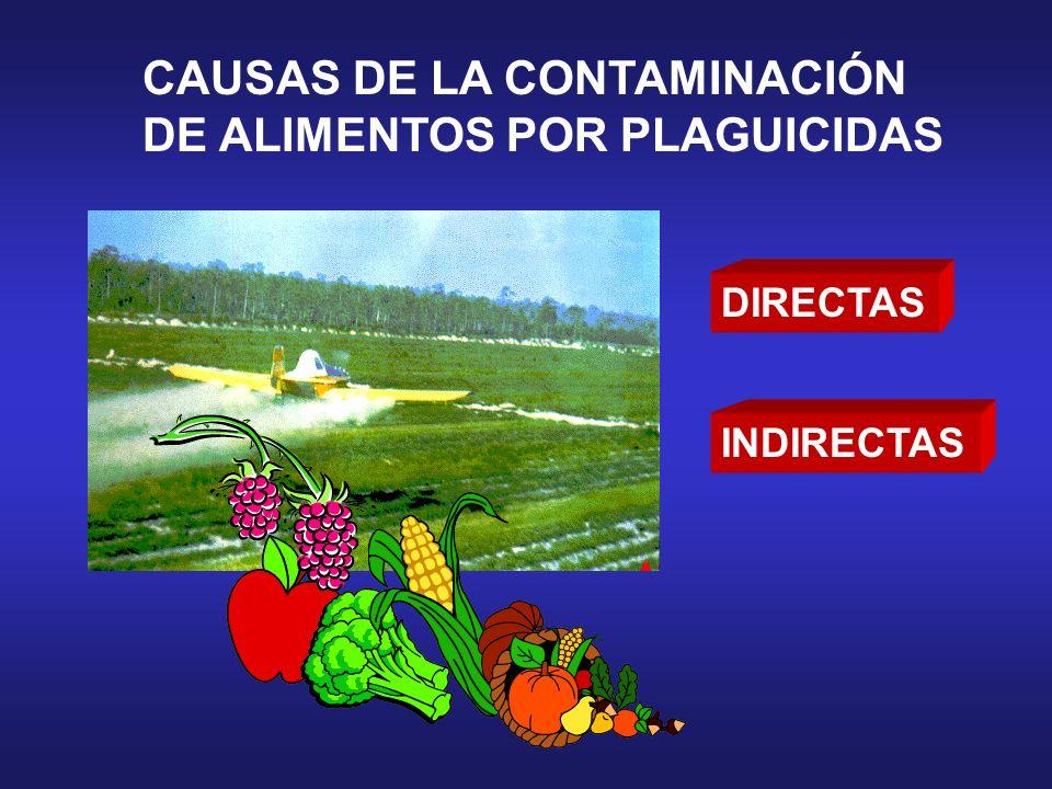CAUSAS DE LA CONTAMINACIÓN DE ALIMENTOS POR PLAGUICIDAS DIRECTAS INDIRECTAS