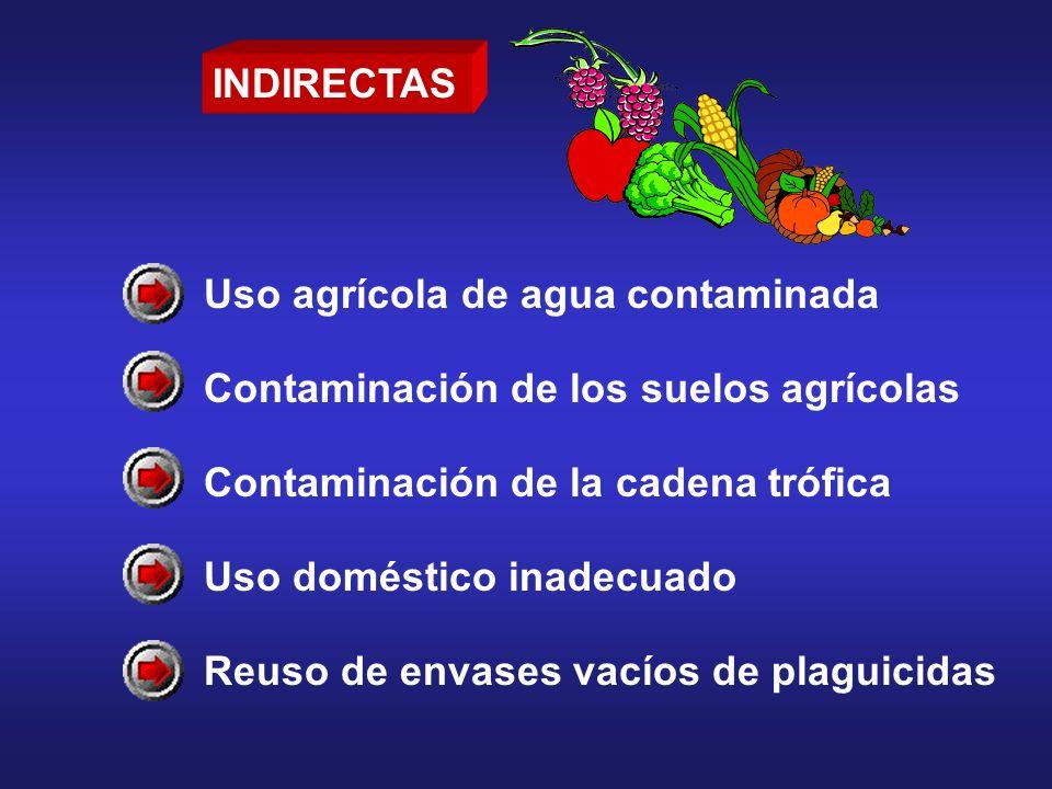 INDIRECTAS Uso agrícola de agua contaminada Contaminación de los suelos agrícolas Contaminación de la cadena trófica Uso doméstico inadecuado Reuso de