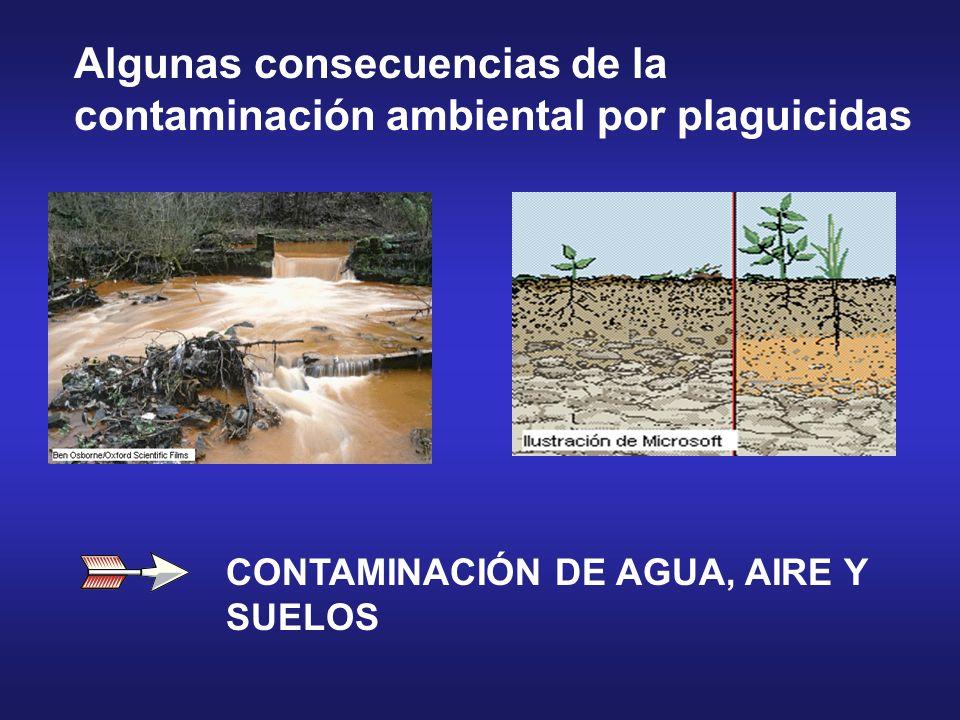 CONTAMINACIÓN DE AGUA, AIRE Y SUELOS Algunas consecuencias de la contaminación ambiental por plaguicidas