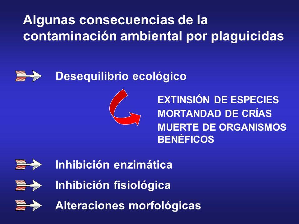 Desequilibrio ecológico EXTINSIÓN DE ESPECIES MORTANDAD DE CRÍAS MUERTE DE ORGANISMOS BENÉFICOS Inhibición enzimática Inhibición fisiológica Alteracio