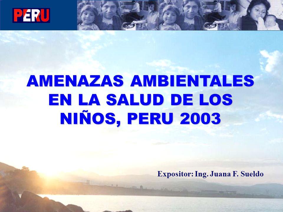 AMENAZAS AMBIENTALES EN LA SALUD DE LOS NIÑOS, PERU 2003 Expositor: Ing. Juana F. Sueldo